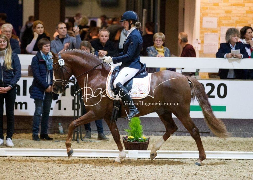 Bundeschampionatsqualifikation Heide 7
