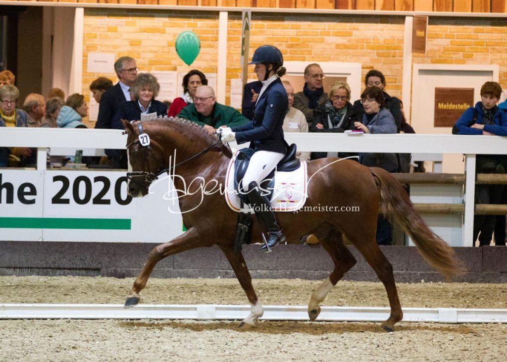 Bundeschampionatsqualifikation Heide 8