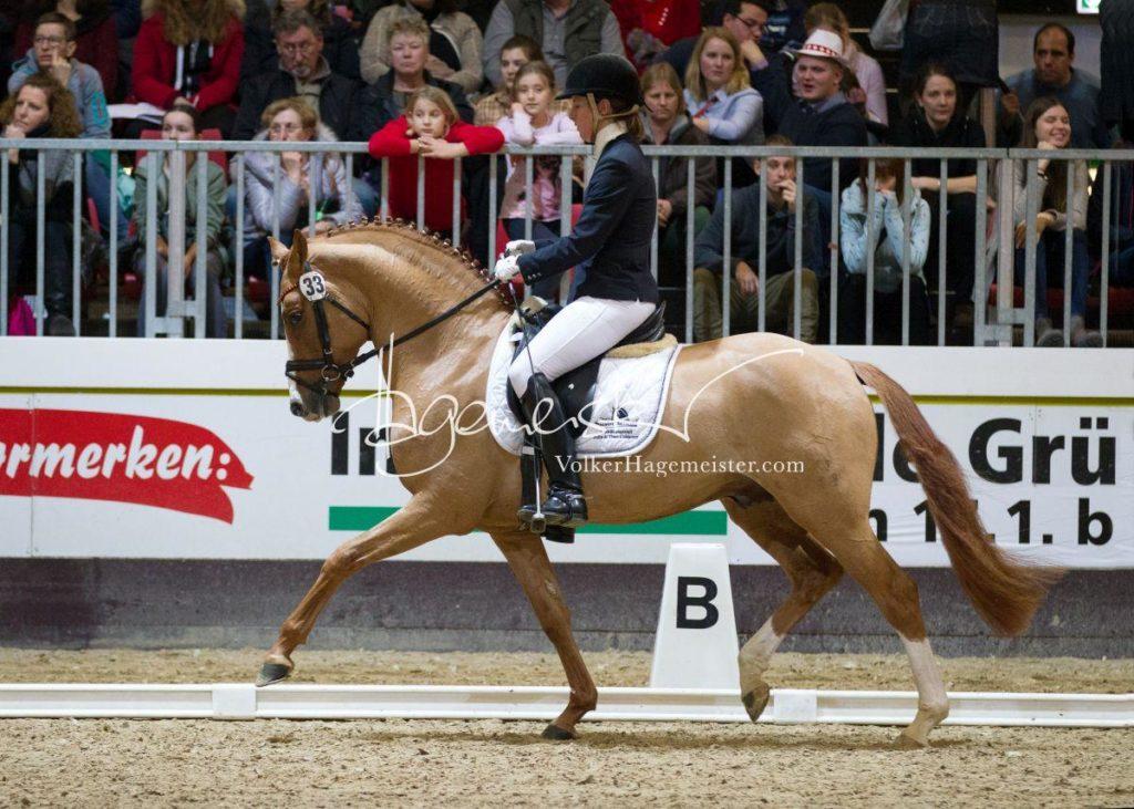 Bundeschampionatsqualifikation Heide 20