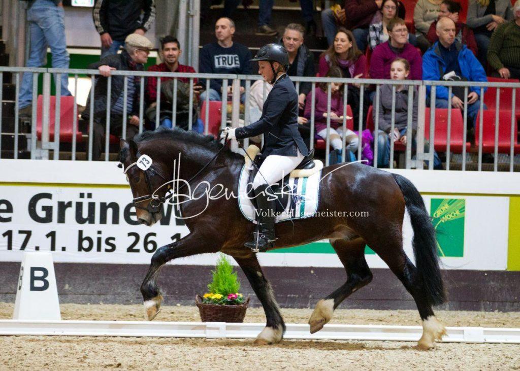 Bundeschampionatsqualifikation Heide 57
