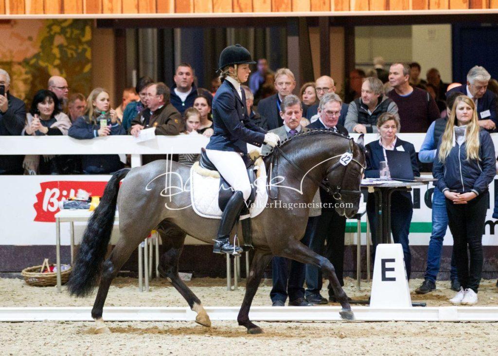 Bundeschampionatsqualifikation Heide 59