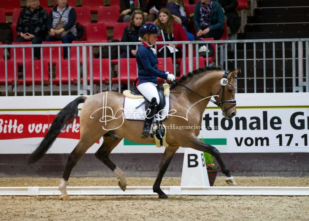 Bundeschampionatsqualifikation Heide 62
