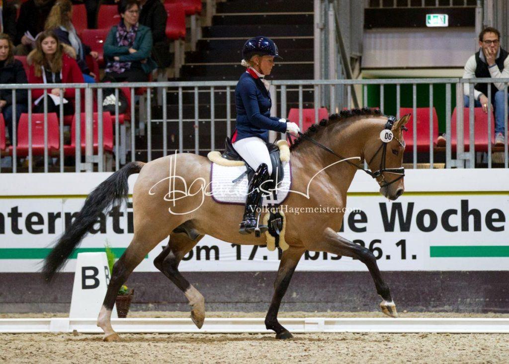 Bundeschampionatsqualifikation Heide 63