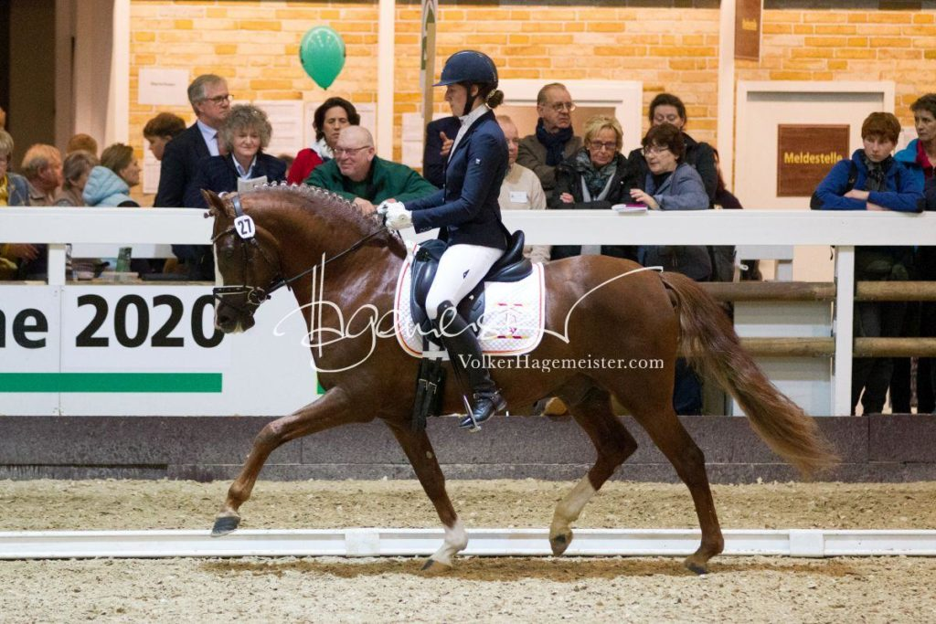 Bundeschampionatsqualifikation Heide 117