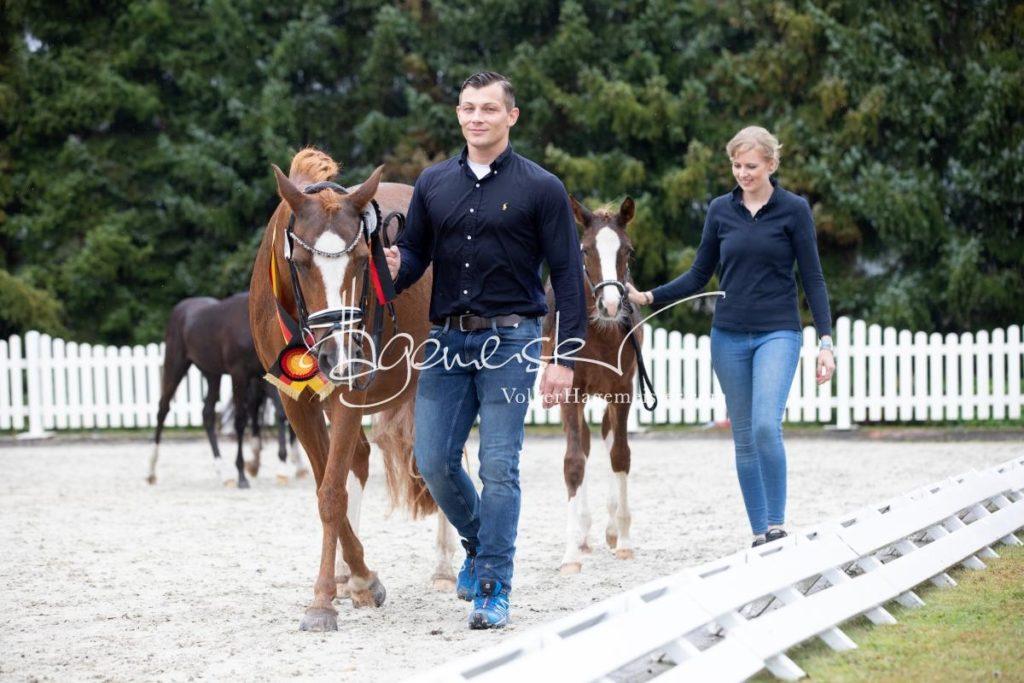 Deutsches Reitpony Fohlenchampionat 48