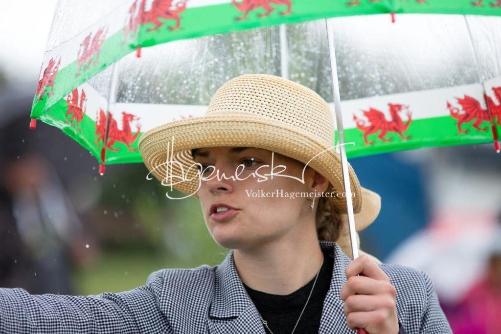 Regionalschau S-H/HH e.V. IG Welsh 79