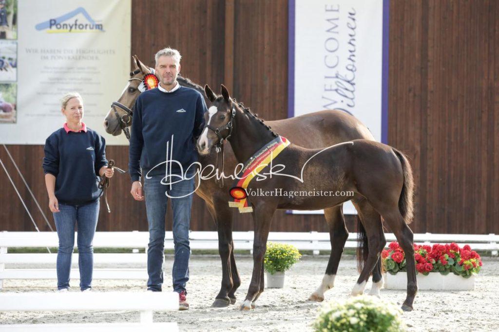 Deutsches Reitpony Fohlenchampionat 24