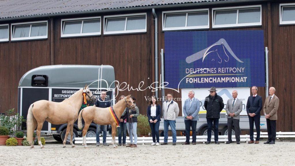 Deutsches Reitpony Fohlenchampionat 77
